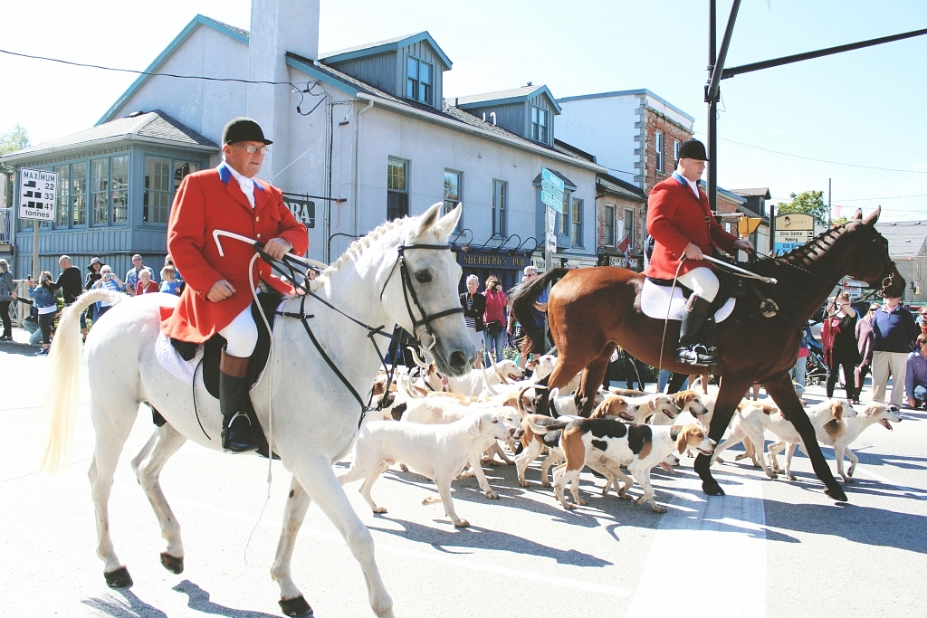 Elora Horse and Hound Parade